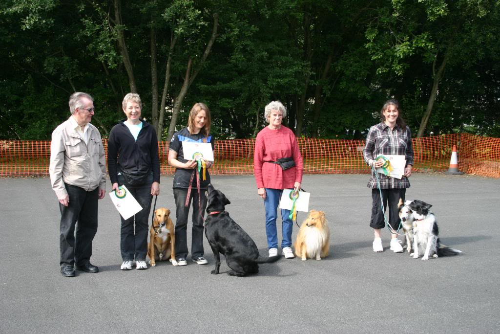 Dog Training Greenfield Oldham